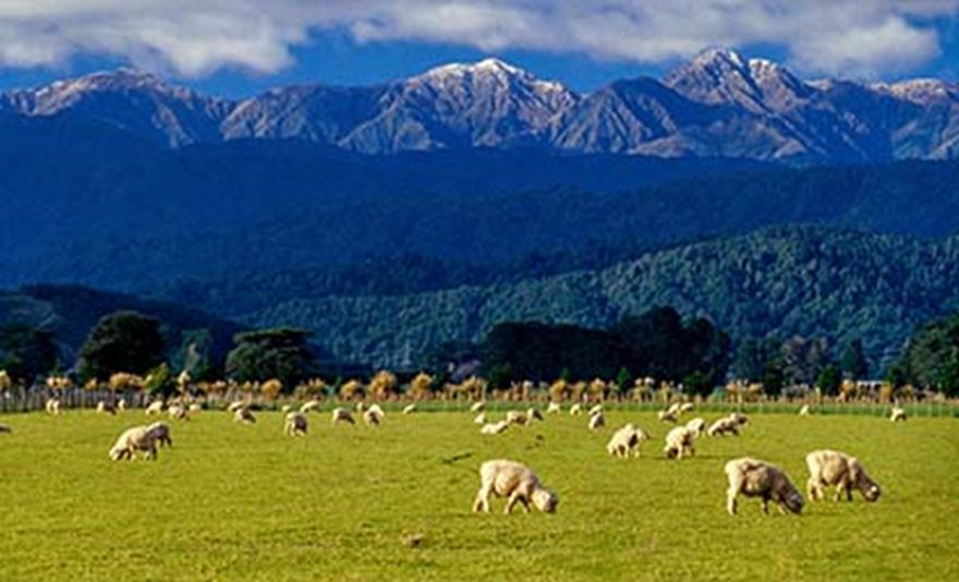 A note on New Zealand's methane emissions from livestock